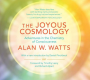 The Joyous Cosmology